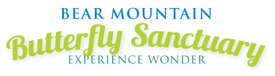 Bear Mountain Butterfly Sanctuary