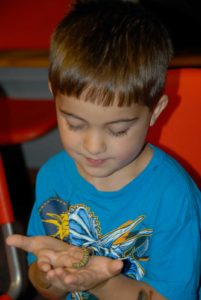 boy holding caterpillar